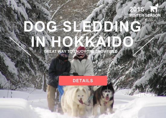 Dog Sledding in Hokkaido